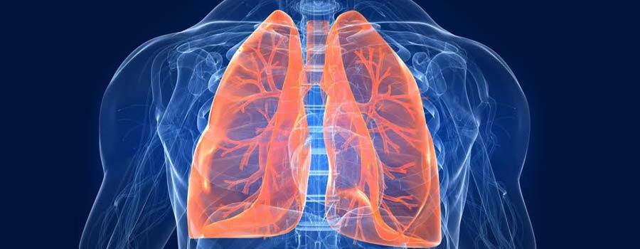 Scientific Evidence for Breathing Trainers