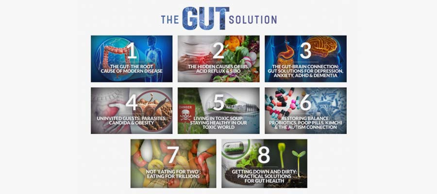 Topics Covered The Gut Solution